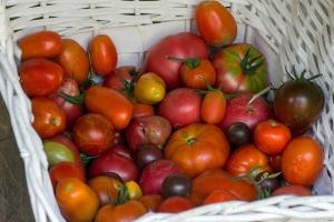 vegetables-930753_1920