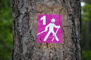 hiking-1454936_1920